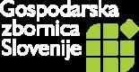 logo_gzs_SPB